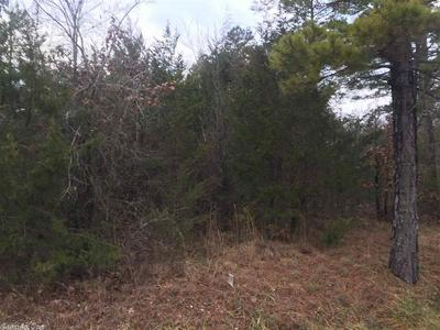 000 OLD DOLPH ROAD, Dolph, AR 72528 - Photo 1