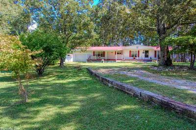 425 COUNTY ROAD 206, Norfork, AR 72658 - Photo 1