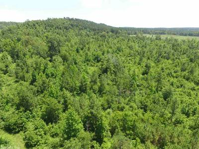 10.26 ACRES HWY 84 WEST, Amity, AR 71921 - Photo 2