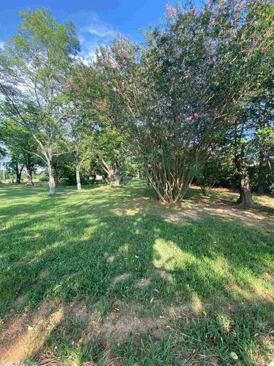 1850 E GERMAN LN, Conway, AR 72032 - Photo 1