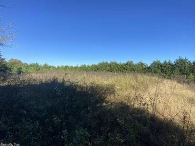 383 DOVE FIELD RD, Ash Flat, AR 72513 - Photo 2