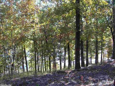 TRACT 2 LAKE BARNETT ROAD, Romance, AR 72136 - Photo 2