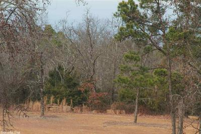 PRIVATE ROAD, Delaware, AR 72835 - Photo 2