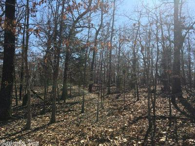 0000 RANCH TRAIL, Viola, AR 72583 - Photo 2
