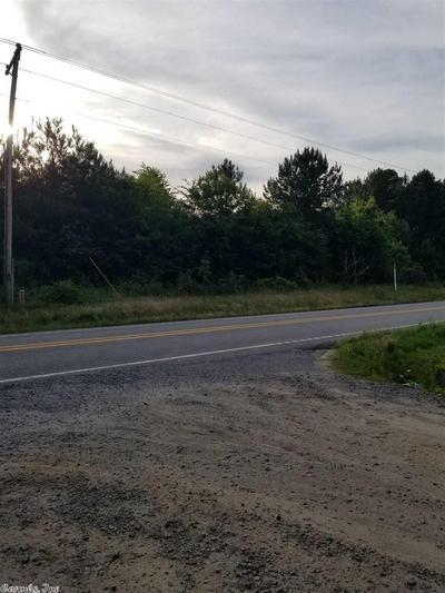 00 HWY 95 HIGHWAY, Hattieville, AR 72063 - Photo 1