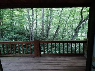 60 BEAR LAKE RD, Tuckasegee, NC 28783 - Photo 2