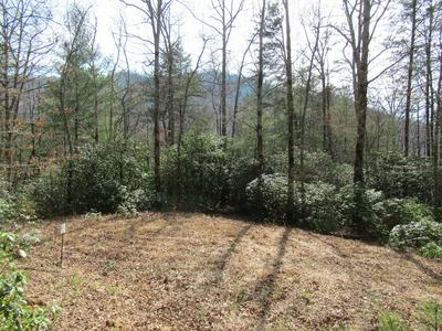 00 CLIFF VIEW DR, FRANKLIN, NC 28734 - Photo 2
