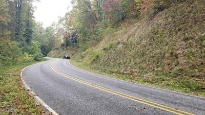 0 MOUNTAIN GROVE ROAD, Franklin, NC 28734 - Photo 1