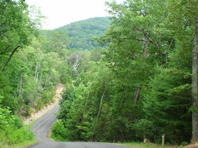 LOT #10 PORTER CREEK ROAD PHS 2, Franklin, NC 28734 - Photo 2