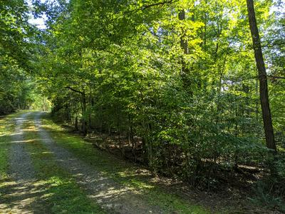 00 DOVE HOLLOW LN, Franklin, NC 28734 - Photo 2