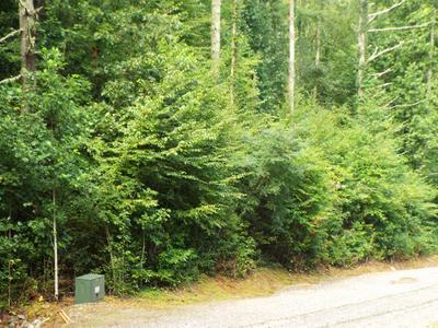 000 RUSTLING WOODS TRAIL, Cullowhee, NC 28723 - Photo 2