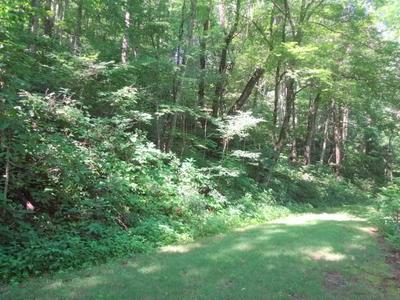 LOT 28A WHISPER MOUNTAIN RD., Franklin, NC 28734 - Photo 1