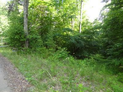 00 HIDDEN HILLS ROAD, Franklin, NC 28734 - Photo 1