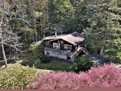 435 PEACH TREE RD, Cullowhee, NC 28723 - Photo 1