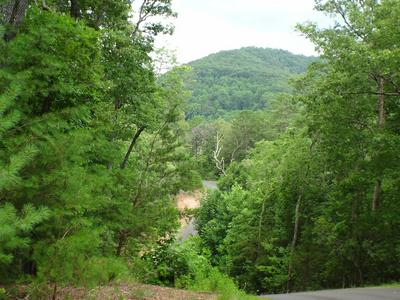 LOT # 11 PORTER CREEK ROAD PHS 2, Franklin, NC 28734 - Photo 2