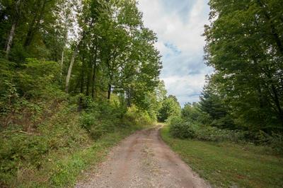 2348 POPLAR COVE RD, Franklin, NC 28734 - Photo 2