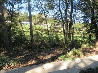 242 HOLLY SPRING VILL RD LOT 4, Franklin, NC 28734 - Photo 2