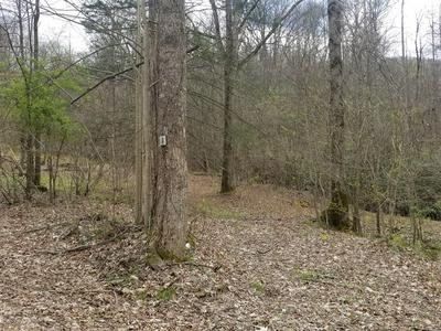 LOT 1, FRANKLIN, NC 28734 - Photo 2