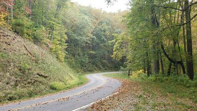 0 MOUNTAIN GROVE ROAD, Franklin, NC 28734 - Photo 2