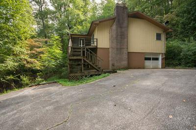 138 CROAKIN FROG RD, Otto, NC 28763 - Photo 2