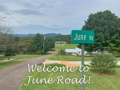 00 JUNE ROAD, Franklin, NC 28734 - Photo 2