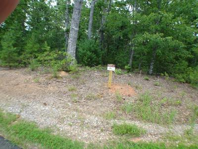 LOT #12 PORTER CREEK ROAD PHS 2, Franklin, NC 28734 - Photo 2