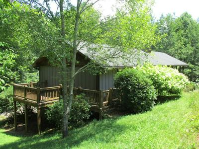 717 CANEY FORK RD, Cullowhee, NC 28723 - Photo 2