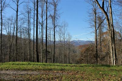 37 BARBERRY DR, Franklin, NC 28734 - Photo 1