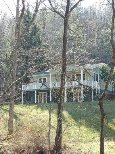 48 WINDY HILL FARM RD, Franklin, NC 28734 - Photo 2