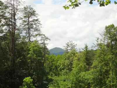 00 RICKMAN CREEK RD., Franklin, NC 28734 - Photo 2