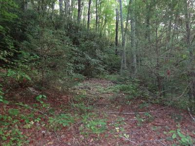 00 MOUNTAIN AIR ROAD, Franklin, NC 28734 - Photo 1