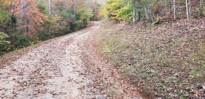 LOT #1 RIDGETOP TRAIL, Franklin, NC 28734 - Photo 2