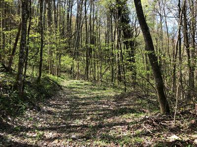 74 BLACK ROCK RD, Cherokee (Jackson Co.), NC 28719 - Photo 1
