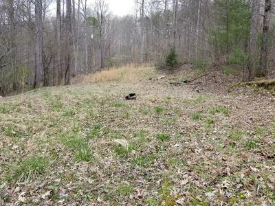 LOT 2 HIDDEN HILLS ROAD, FRANKLIN, NC 28734 - Photo 2