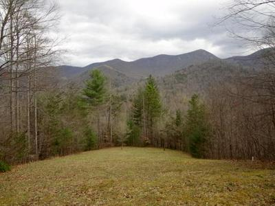 00 BEAR BACK RIDGE, FRANKLIN, NC 28734 - Photo 1