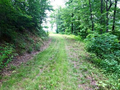 LT 11-12 WILD TURKEY DRIVE, Dillsboro, NC 28725 - Photo 2