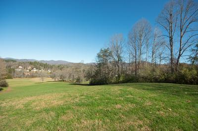 51 HOLLY SPRING VILL RD, Franklin, NC 28734 - Photo 2