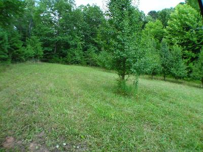 LOT #3 PORTER CREEK ROAD, Franklin, NC 28734 - Photo 2