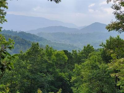 00 CLIFF VIEW DRIVE, Franklin, NC 28734 - Photo 1