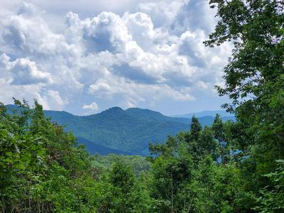 11 SANCTUARY LN, Franklin, NC 28734 - Photo 1