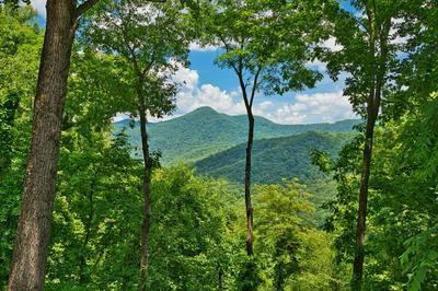681 WHISPER MOUNTAIN RD, Franklin, NC 28734 - Photo 2