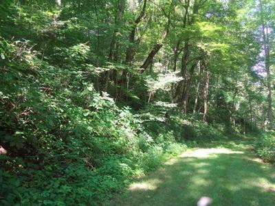 LOT 28A WHISPER MOUNTAIN RD., Franklin, NC 28734 - Photo 2