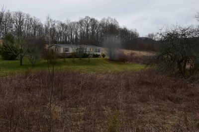 4375 CHARLEYS CREEK RD, TUCKASEGEE, NC 28783 - Photo 1