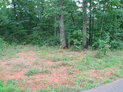 C-3 LODGE VIEW ROAD, Franklin, NC 28734 - Photo 2