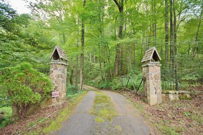 501 PANTHER RIDGE LN, Franklin, NC 28734 - Photo 2