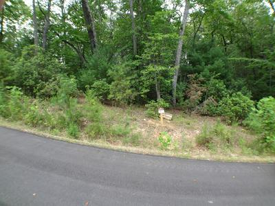 LOT #13 PORTER CREEK ROAD PHS 2, Franklin, NC 28734 - Photo 2