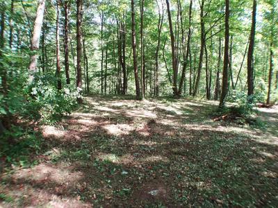 LOT #13 HIGHLANDS GORGE PT, Franklin, NC 28734 - Photo 1