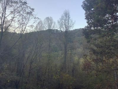 998 S COUNTRY CLUB DR, Cullowhee, NC 28723 - Photo 2