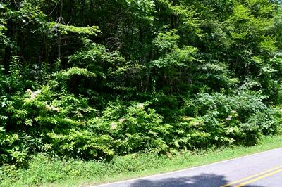 0 RIDGEVIEW, Scaly Mountain, NC 28775 - Photo 2