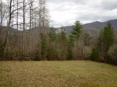 00 BEAR BACK RIDGE, FRANKLIN, NC 28734 - Photo 2